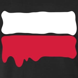 Ho invaso la Polonia